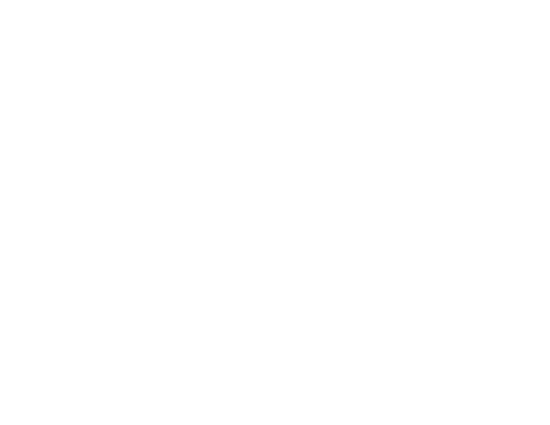 Genuine Vehicle Service Products